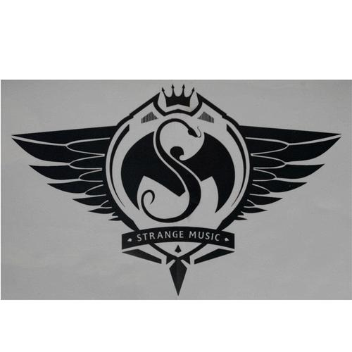 "Strange Music - Silver Sticker 12.5"" x 8"""